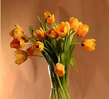 Yellow tulips by Evgeniya
