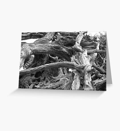Natural Sculpture Greeting Card