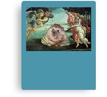 Birth of a Hedgehog Canvas Print