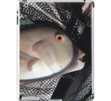 Amazing colored fish eyes iPad Case/Skin