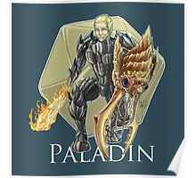 Dungeons and Dragons Paladin Poster