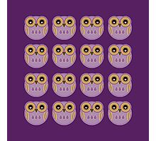 Purple Owls Photographic Print