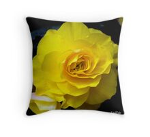 Yellow Begonia ..  Throw Pillow