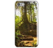 The Forests of Minnekhada iPhone Case/Skin