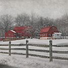Winter At Buffalo Hollow Farm 2014 by Pat Abbott