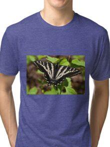 Tiger Swallowtail Butterfly Tri-blend T-Shirt