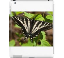 Tiger Swallowtail Butterfly iPad Case/Skin
