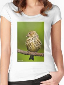 Pine Siskin With Yellow Coloration Women's Fitted Scoop T-Shirt