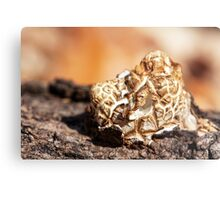 grilled marshmallow Metal Print