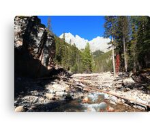 Canyon of King Creek Canvas Print