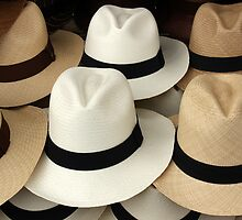 Brown and White Panama Hats by rhamm