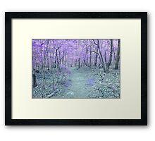 Fairy Walk Way Framed Print