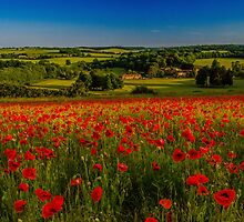 Sunny In England by Stuart Chapman