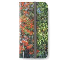 Flame Tree in Flower iPhone Wallet/Case/Skin