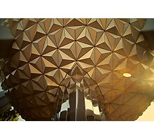 One Golden Earth Photographic Print