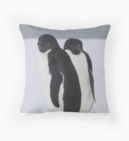 Penguin Pair Throw Pillow