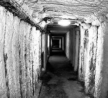 Wieliczka Salt Mine by Rachel Armstrong