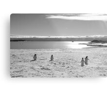 Penguin black and white Metal Print
