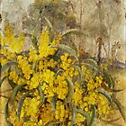 Golden Wattle by garts