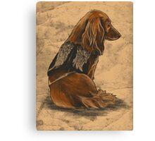 Daryl Dachshund Canvas Print