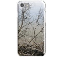 Bare Beach Trees iPhone Case/Skin