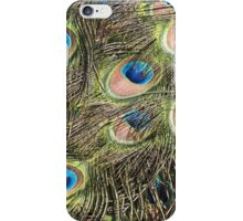 Peacock tail feathers iPhone Case/Skin
