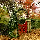 Red Gate of Bebeah, Mt Wilson by Gabrielle  Lees