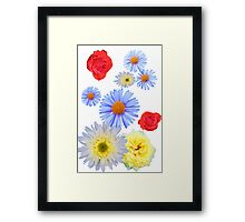 Colorful flowers like living Framed Print