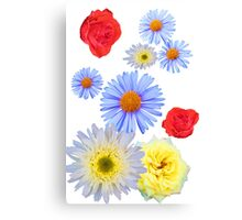 Colorful flowers like living Canvas Print