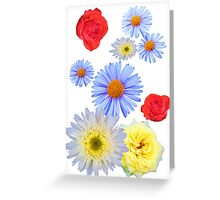 Colorful flowers like living Greeting Card