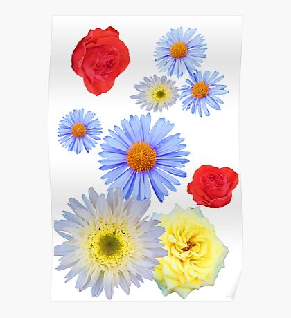Colorful flowers like living Poster