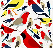 The birds from the colorful world by xart