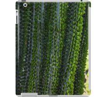 Strange Plantlife - Cactus Garden Barcelona iPad Case/Skin
