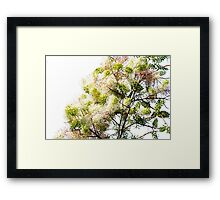 Pink, Green, Yellow Colourful Tree Framed Print