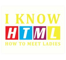 I Know HTML. How to Meet Ladies - Programmer T-shirt Art Print