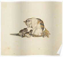 MIND, GOTTFRIED () A mother cat with three young kittens. Poster