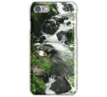 Whitewater River iPhone Case/Skin