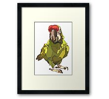 Poly wants a cracker! Framed Print