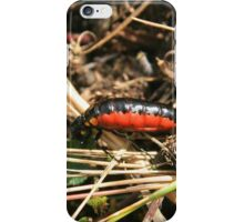 Orange and Black Insect iPhone Case/Skin