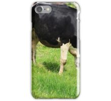 Cow With Horns Grazing iPhone Case/Skin