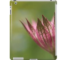 Astrantia Macro iPad Case/Skin