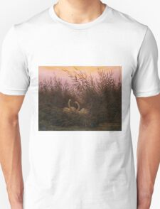 Swans among the Reeds at the first Morgenro by Caspar David Friedrich  Unisex T-Shirt