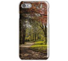 Maesteg Park. iPhone Case/Skin