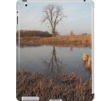 Late Autumn Lake iPad Case/Skin