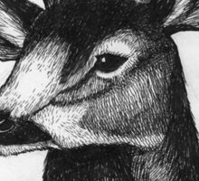 Detailed black and white ink deer Sticker