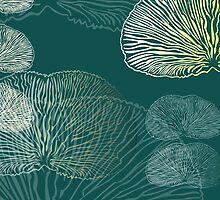Oyster mushroom  by lucychili