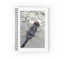 In rest Spiral Notebook