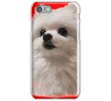 Gabe the Dog - Birthday iPhone Case/Skin