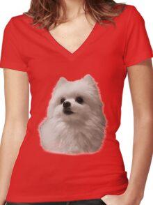 Gabe the Dog - Birthday Women's Fitted V-Neck T-Shirt
