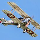 Bristol Scout Type C replica 1264 G-FDHB by Colin Smedley